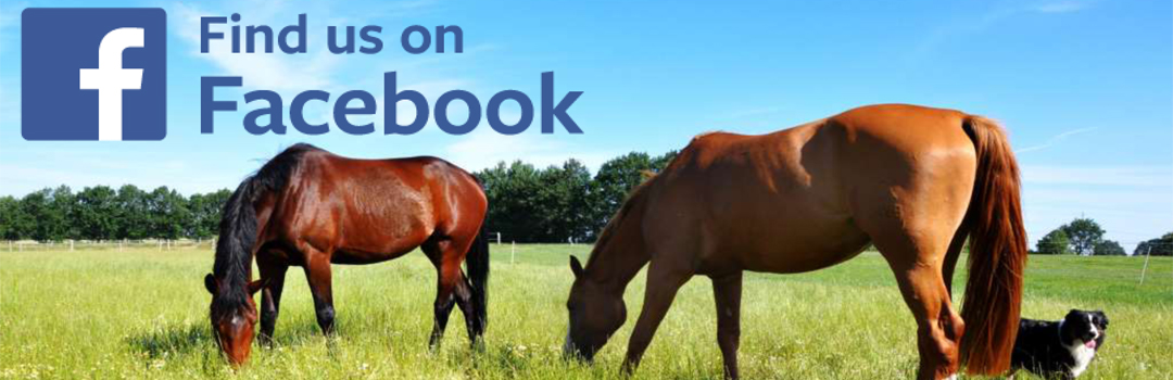 Find us on Facebook_PUUR_NML