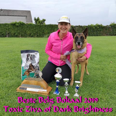 Beste Belg lokaal voor Ziva van Blazing Amber_PUUR voor dieren