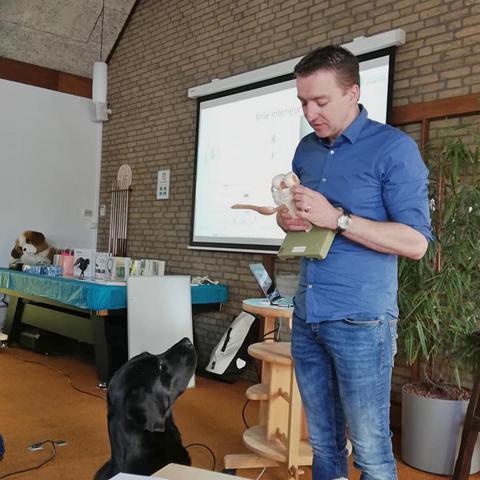Ceriel Maas, Pijn bij honden, orthopedie