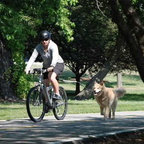 Altranet fietslijn Cycleash samen met Vetramil Paw wax