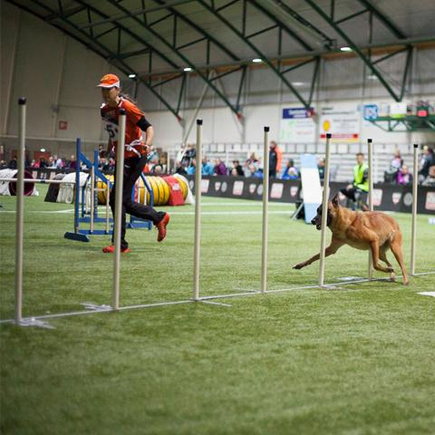 Foto: Living for Agility_PUUR Drainage