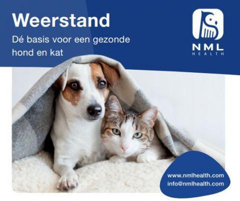 NML health weerstand verhogen