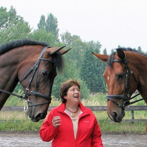 blog/gesprek-met-marion-auteur-dressuur-de-boodschap-van-de-paarden_NML_health