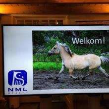 PUUR Paard en Beweging_NML health