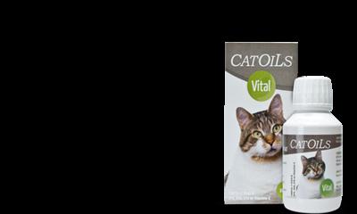 catoils voor een gezond gebit en goed tandvlees